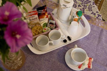 Bed and Breakfast Soggiorno Primavera, Firenze (Firenze)