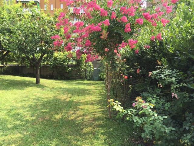 Bed and breakfast giardino fiorito cinisello balsamo milano for Giardino fiorito